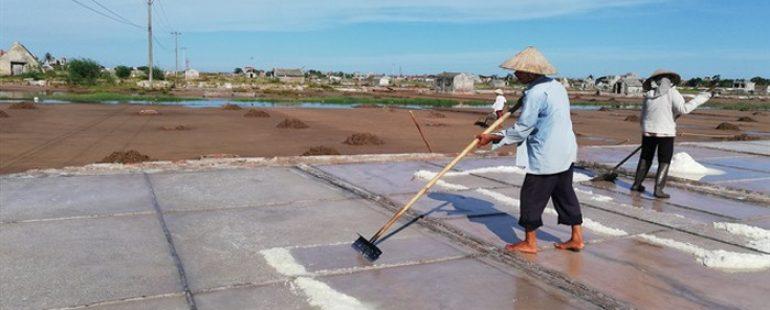 Thêm một mùa muối 'đắng ngắt', nghề làm muối Hải Lý có nguy cơ xóa sổ